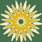 icon-zalis